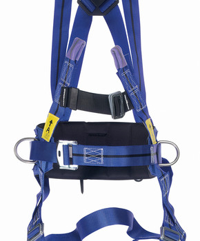 TITAN 2 point harness with positioning belt